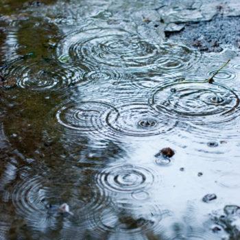 Hydraulics & Hydrology